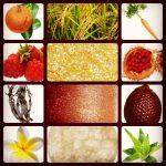 Sun Tan ingredients