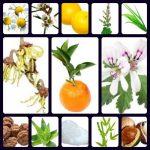 deodorant ingredients pictures